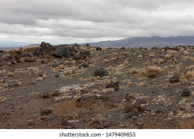 Volcanic field Ruapehu. Lava brown surface with grass