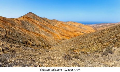 Volcanic Landscape in Fuertevendura, Canary Islands