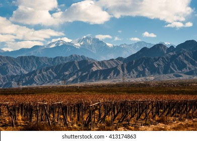 Volcano Aconcagua and Vineyard. Aconcagua is the highest mountain in the Americas at 6,962 m (22,841 ft). It is located in the Andes mountain range, in the Argentine province of Mendoza