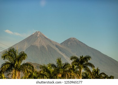 Volcano in the distance in Guatemala with palm trees in the foreground.