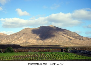 Volcano and fields on the Lancerote island, Canary, Spain