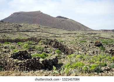 Volcano and stone walls on the Fuerteventura island, Spain