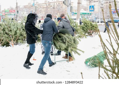 VOLGOGRAD, RUSSIA - 27 December, 2018: Street sale and packing of a green fir-tree for New year in Volgograd