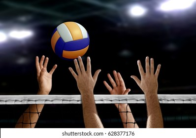 Royalty Free Volleyball Stock Images Photos Vectors Shutterstock