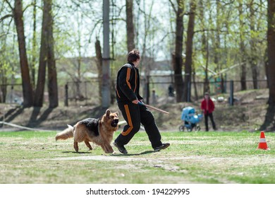 Vologda, Russia - 10 May 2014: Training of guard dog, the moment of the attack, on May 10, 2014 in Vologda, Russia