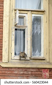 VOLOGDA, RUSSIA - 12 AUGUST 2016: Old wooden window with cat of in the central part of Vologda.