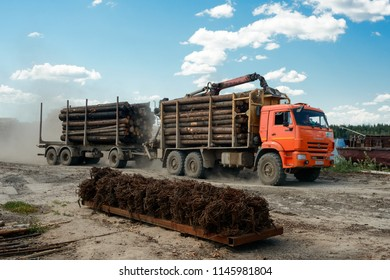 Vologda, Russia - july 17, 2018: Full load truck carries wooden logs. Logging, transportation of wood