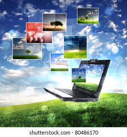 volor collage of notebook against green nature background