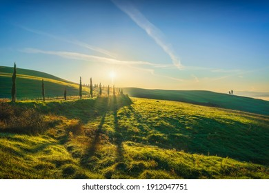 Volterra landscape, tree lined road, rolling hills and fog at sunrise. Tuscany, Italy, Europe