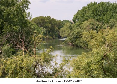 The Volturno river in Capua Italy among the Jungle at sunny day
