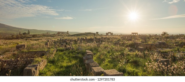Volubilis morocco ancient roman city ruins unesco