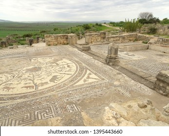 Volubilis, Morocco - January 2014 : Roman ruins in winter, HDR image