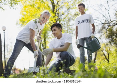 Volunteer wanted. Merry three volunteers planting tree and smiling