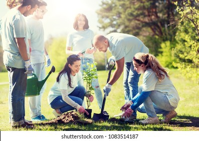 volunteering, charity, people and ecology concept - group of happy volunteers planting tree and digging hole with shovel in park