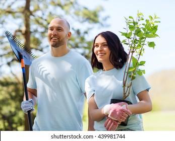 volunteering, charity, people and ecology concept - happy couple volunteers with tree seedlings and rake walking in park