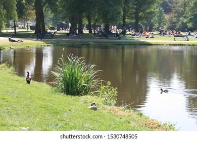 Vondelpark in Amsterdam, Netherlands, Holland