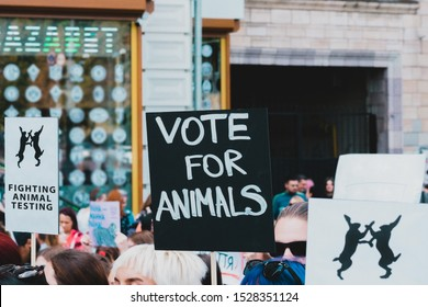 """"""" Vote for animals """" banner at Animal Right Protest. No to animal testing. Cruelty free. March for animal. Rally"""