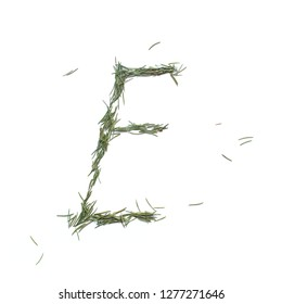 Vowel E english alphabet. Christmas hand made. Font made of fir tree needles isolated on white