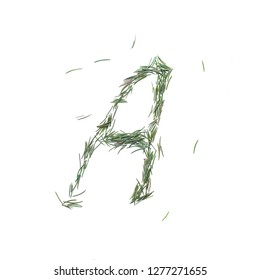 Vowel English alphabet A. Christmas hand made. Font made of fir tree needles isolated on white