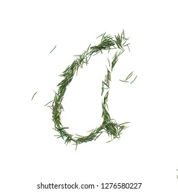 Vowel A english alphabet. Christmas letters. Font made of fir tree needles isolated on white