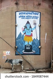 Vranasi, or Benares, Uttar Pradesh, India - Jan 11 2014: A cow standing in front of the painting of Shiva, one of the principal deities of Hinduism.