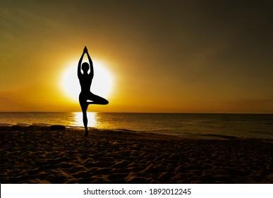 Vrikshasana tree pose from yoga by woman silhouette on sunset
