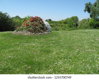 Vukovar Croatia May 10th 2017 Big bouquet flower on the ground in the park surrounded with tree