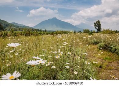 vulcano in Rwanda