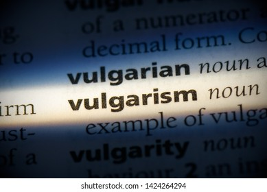 vulgarism word in a dictionary. vulgarism concept, definition.