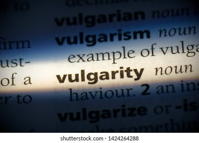 vulgarity word in a dictionary. vulgarity concept, definition.