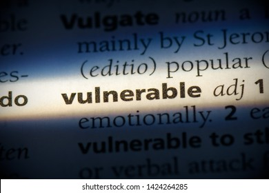 vulnerable word in a dictionary. vulnerable concept, definition.