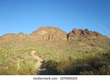 Vulture Peak in Arizona 02