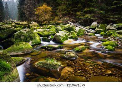 Vydra river, Sumava National Park, Czech republic