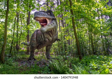 Vyskov na Morave, Czech Republic - May 11, 2019: Tyrannosaurus rex with open mouth in real landscape