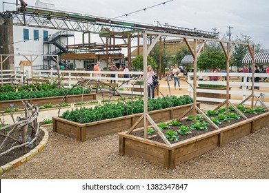 WACO, Texas / United States - April 1, 2019, Gardens and garden center at Magnolia Market owned by Chip and Joanna Gaines from the HGTV show Fixer Upper
