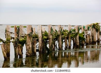 Wadden Sea, Danish coastline