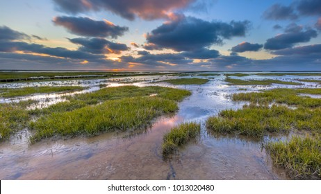 Wadden sea mud-flats of a tidal marsh where new land is being created on the Groningen coast in the Netherlands