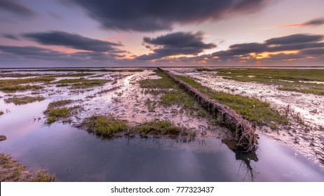 Wadden sea mud-plains of  tidal marsh where new land is being created on the Groningen coast in the Netherlands