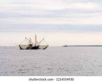 WADDENSEA, NETHERLANDS - AUG 22, 2017: Shrimp trawlers fishing on the Wadden Sea,  Netherlands