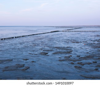 waddenzee or wadd sea during sunset seen from jetty of ameland ferry in dutch province of friesland