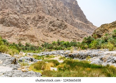 Wadi Al Arbeieen in eastern Muscat Governorate, Oman. It is located about 120 km from Muscat.