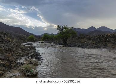 Wadi Al Shawkha, Ras Al Khaimah, UAE
