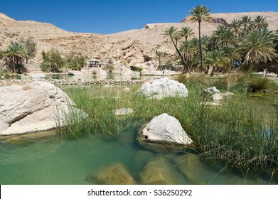 Wadi Bani Khalid - Oasis, lake and river - Oman desert