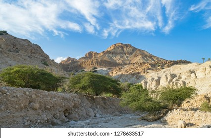 wadi david near the dead sea shore in the ein gedi area of israel with mount yishai in the background
