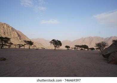 Wadi e Jinn Madina