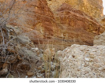 Wadi Mukheiris in Jordan. Valley of relict river. Biblical places near the Dead Sea. Wild nature