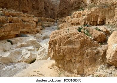 Wadi Murabba'at canyon ( Nahal Darga) ,Judean desert, Israel,Middle East