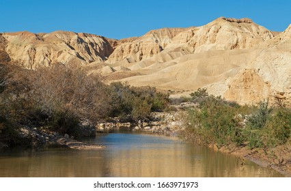 wadi nahal zin stream in the negev highlands in israel full of rainwater surrounded by vegetation and the barren desert mountains