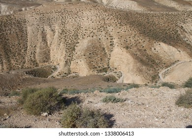 Wadi Qelt in Judean desert near Jericho, nature, stone, rock and oasis. Unseen, unknown, unexplored places, hidden travel destinations, Israel