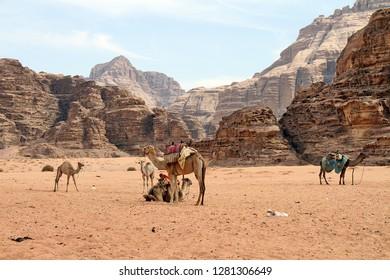 Wadi Ruma desert Jordan